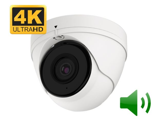 Top 10 Security Camera - Outdoor dome camera with audio and night vision